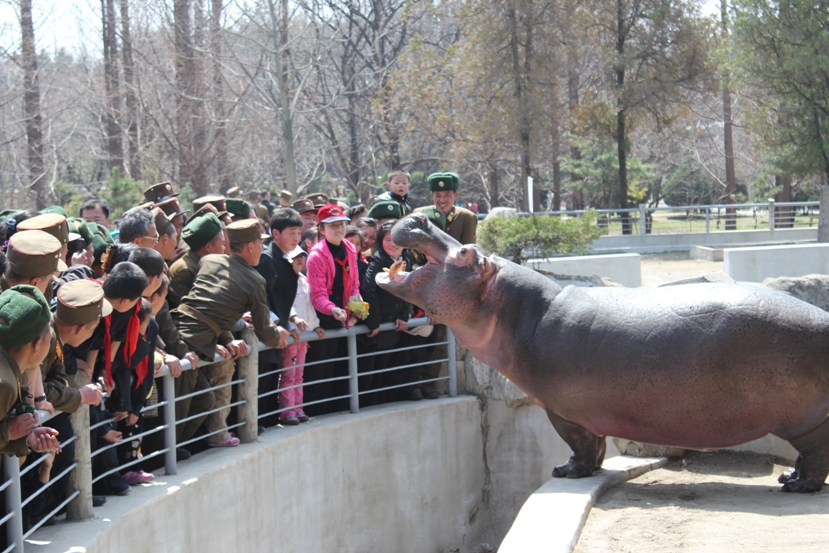 central zoo - pyongyang